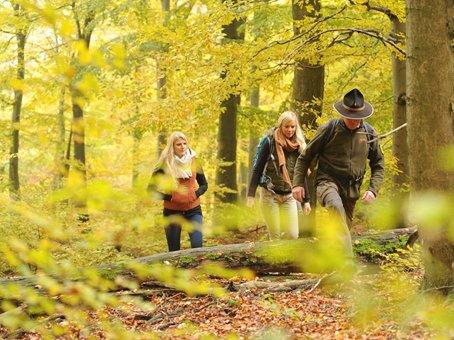 Beginnender Herbst_Wanderer.jpg