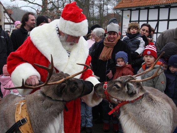 Tierische_Weihnachten_c_Heike_Friedrich.jpg