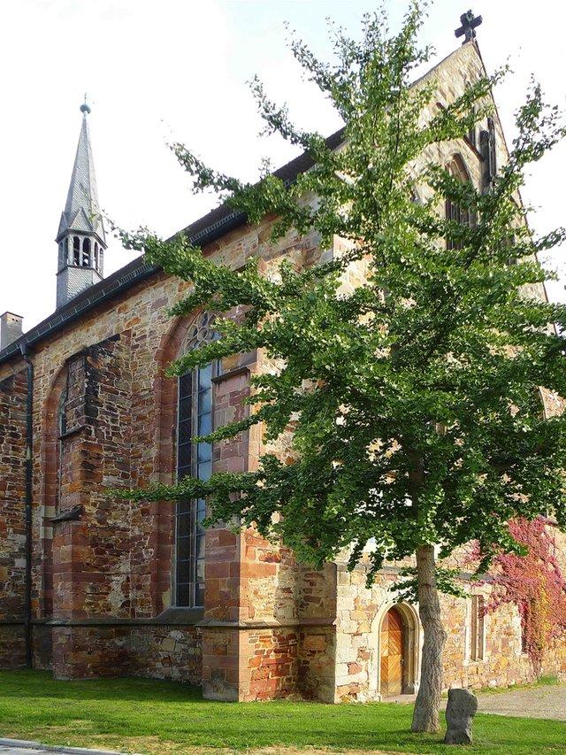 Eichen_Brüderkirche © V. Schäfer.jpg