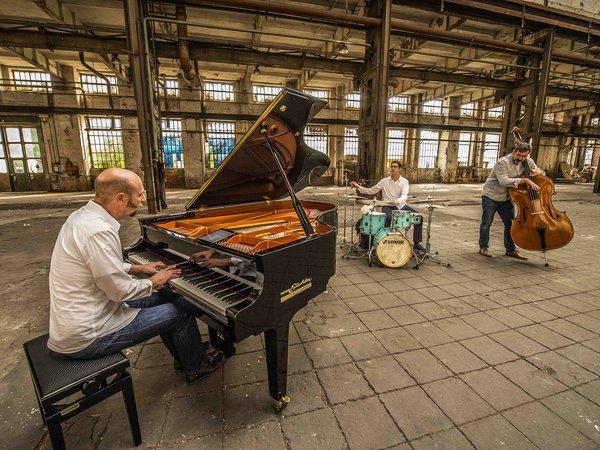 Edgar Knecht Trio © Carsten Herwig.jpg