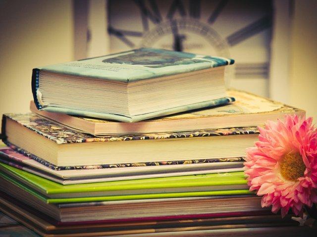 books-3786559_pixabay.jpg