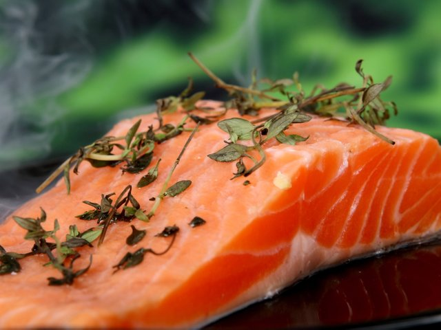 salmon-1238248 Kopie.jpg
